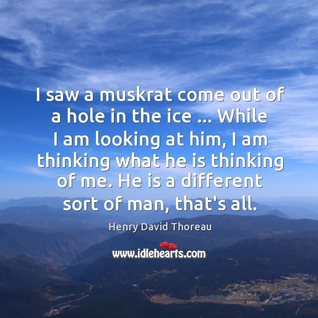 I saw a muskrat come out of a hole in the ice … Image