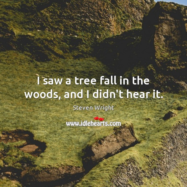 I saw a tree fall in the woods, and I didn't hear it. Image