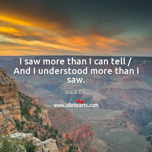 I saw more than I can tell / And I understood more than I saw. Image