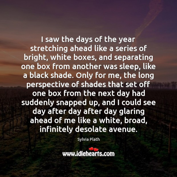I saw the days of the year stretching ahead like a series Image