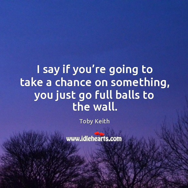 I say if you're going to take a chance on something, you just go full balls to the wall. Image
