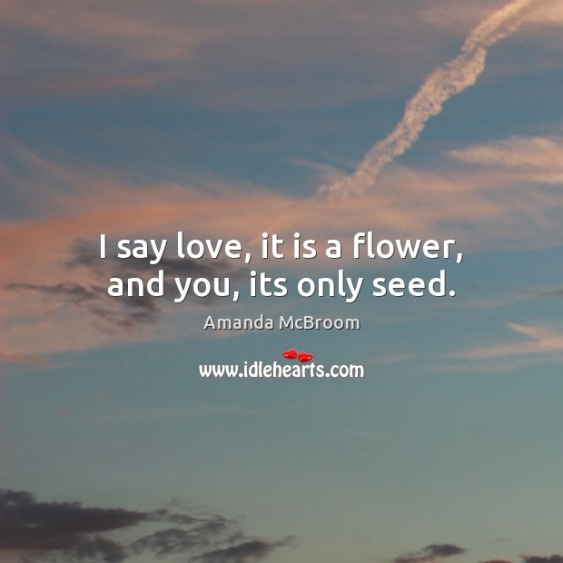 Image, I say love, it is a flower, and you, its only seed.