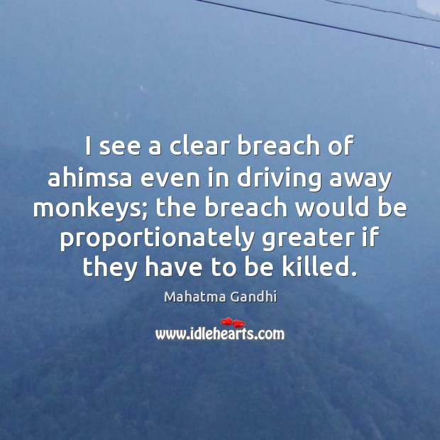 I see a clear breach of ahimsa even in driving away monkeys; Image