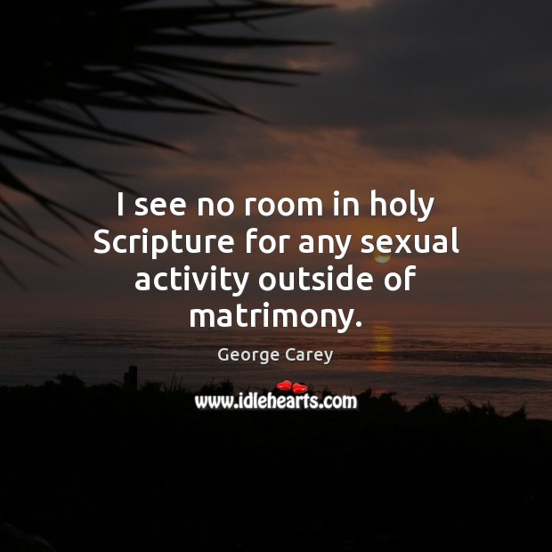I see no room in holy Scripture for any sexual activity outside of matrimony. Image