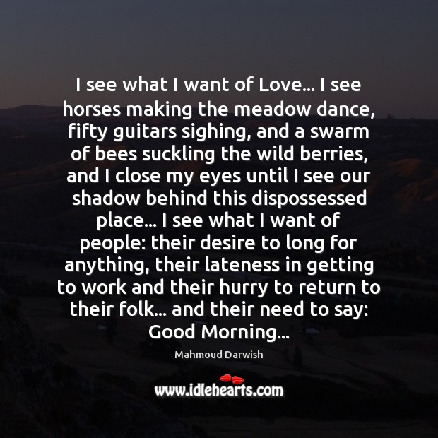 I see what I want of Love… I see horses making the Image