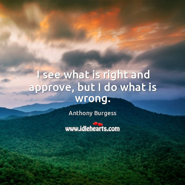 I see what is right and approve, but I do what is wrong. Image