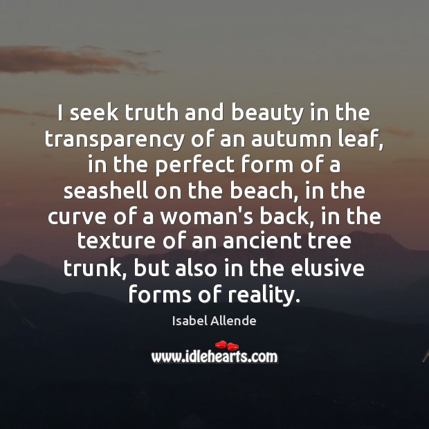 Image, I seek truth and beauty in the transparency of an autumn leaf,