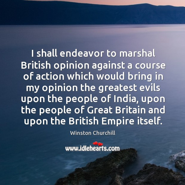 Image, I shall endeavor to marshal British opinion against a course of action