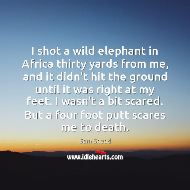 I shot a wild elephant in Africa thirty yards from me, and Image