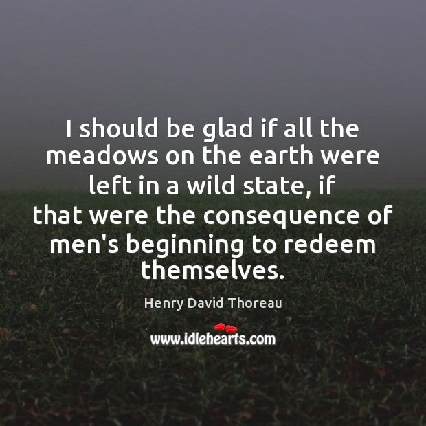 I should be glad if all the meadows on the earth were Henry David Thoreau Picture Quote