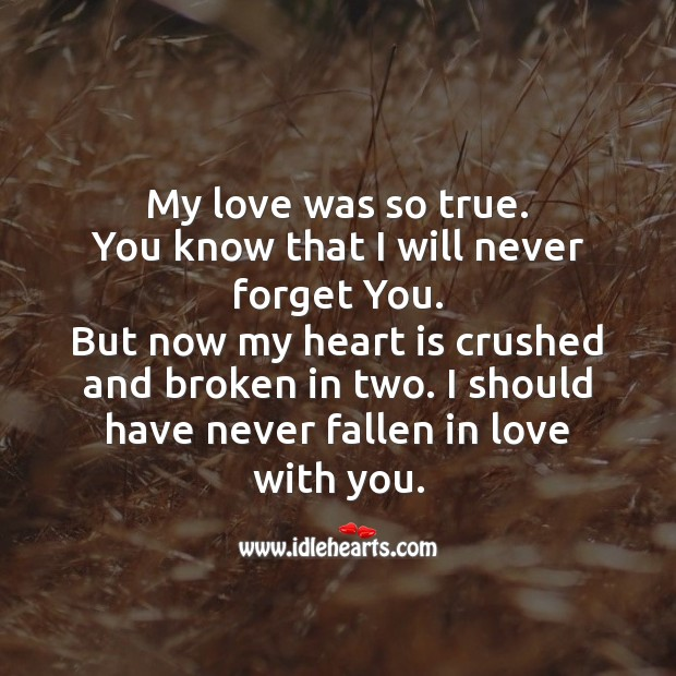 I should have never fallen in love with you. Broken Heart Messages Image