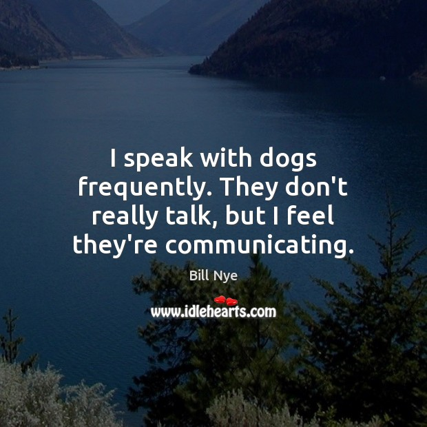 Image, I speak with dogs frequently. They don't really talk, but I feel they're communicating.