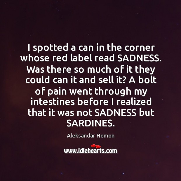 Image, I spotted a can in the corner whose red label read SADNESS.