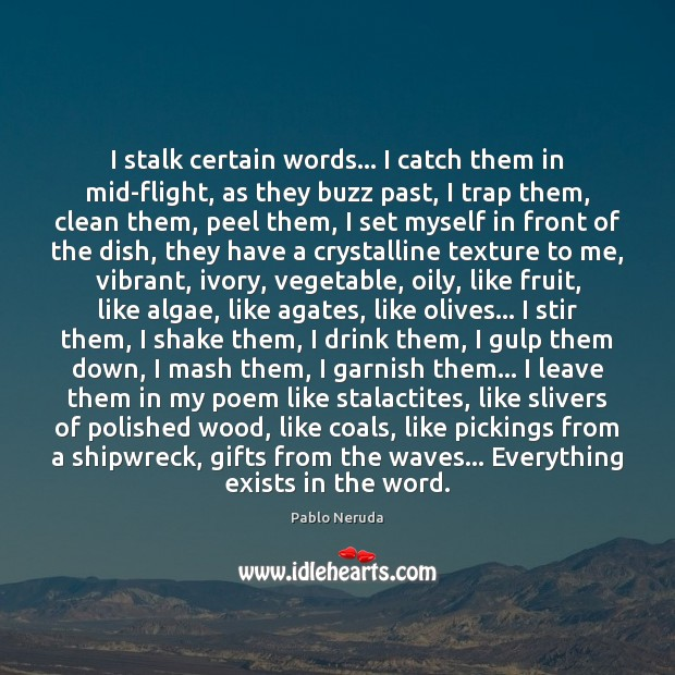 Image, I stalk certain words… I catch them in mid-flight, as they buzz