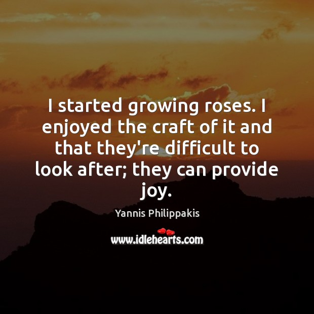 I started growing roses. I enjoyed the craft of it and that Image