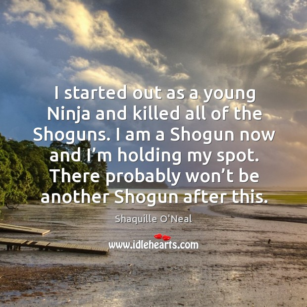 Image, I started out as a young ninja and killed all of the shoguns.