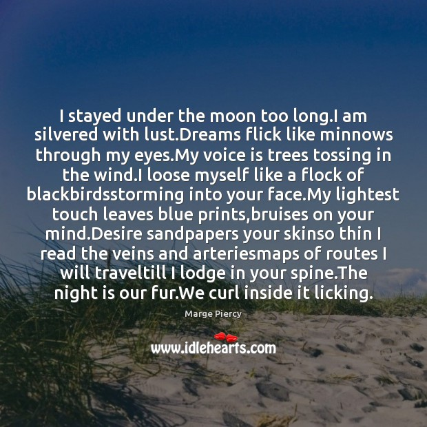 I stayed under the moon too long.I am silvered with lust. Image