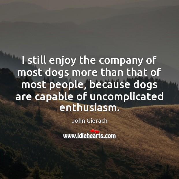 Image, I still enjoy the company of most dogs more than that of