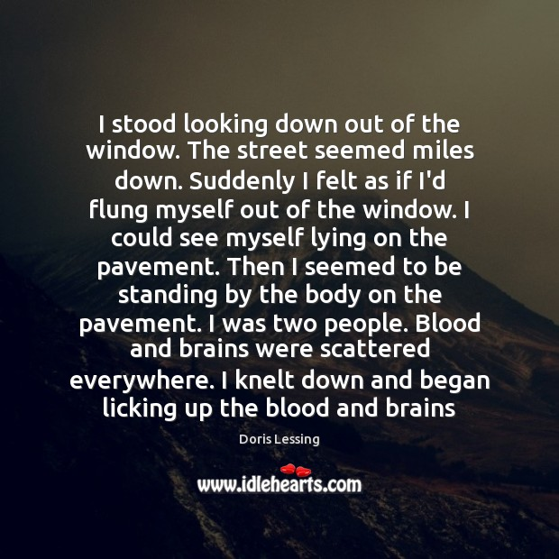 I stood looking down out of the window. The street seemed miles Doris Lessing Picture Quote