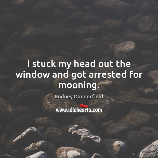 I stuck my head out the window and got arrested for mooning. Image