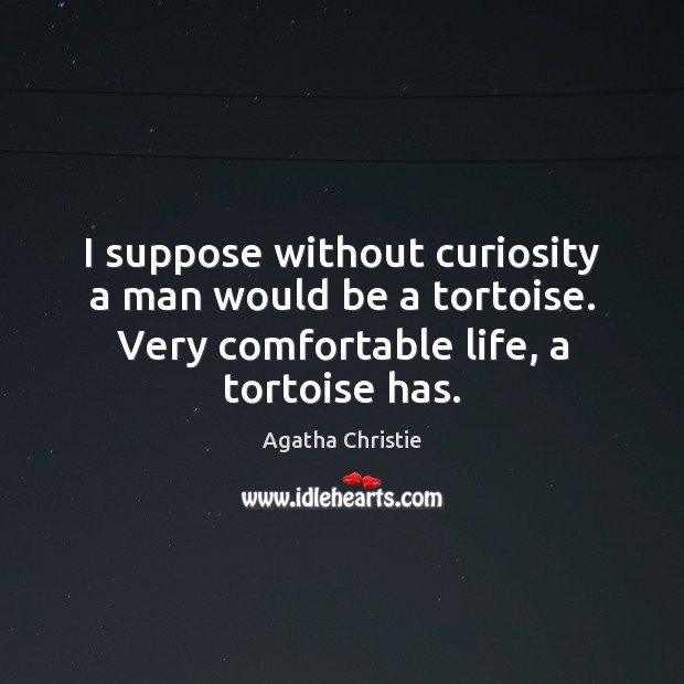 Image, I suppose without curiosity a man would be a tortoise. Very comfortable