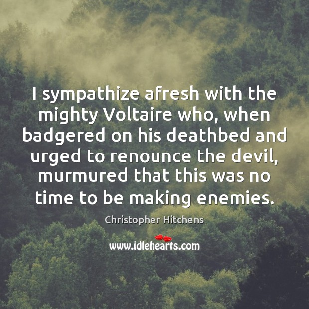 Image, I sympathize afresh with the mighty Voltaire who, when badgered on his