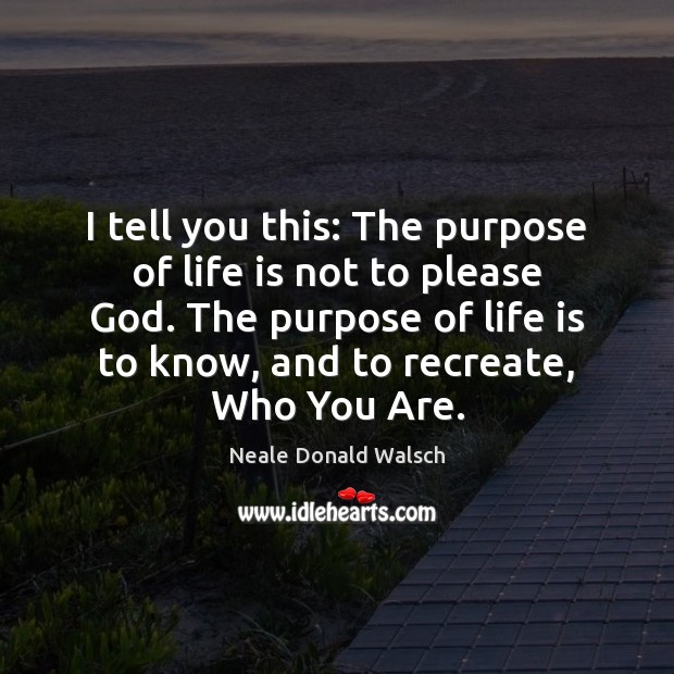 Image, I tell you this: The purpose of life is not to please