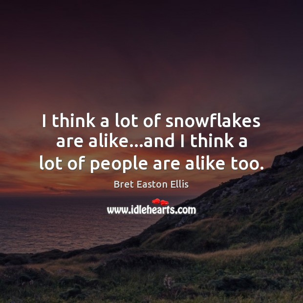 I think a lot of snowflakes are alike…and I think a lot of people are alike too. Bret Easton Ellis Picture Quote