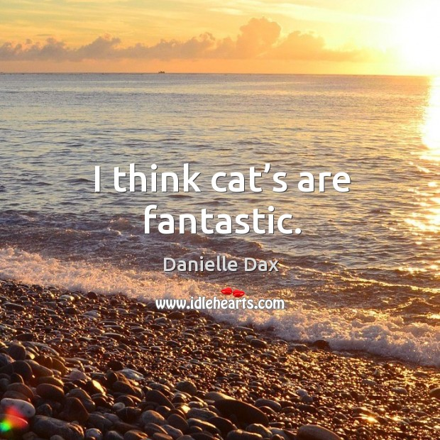 I think cat's are fantastic. Danielle Dax Picture Quote