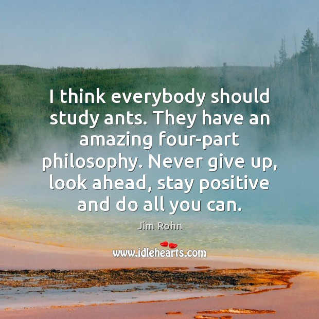 I think everybody should study ants. They have an amazing four-part philosophy. Never Give Up Quotes Image