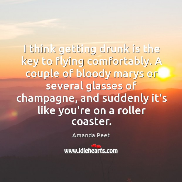 I think getting drunk is the key to flying comfortably. Image