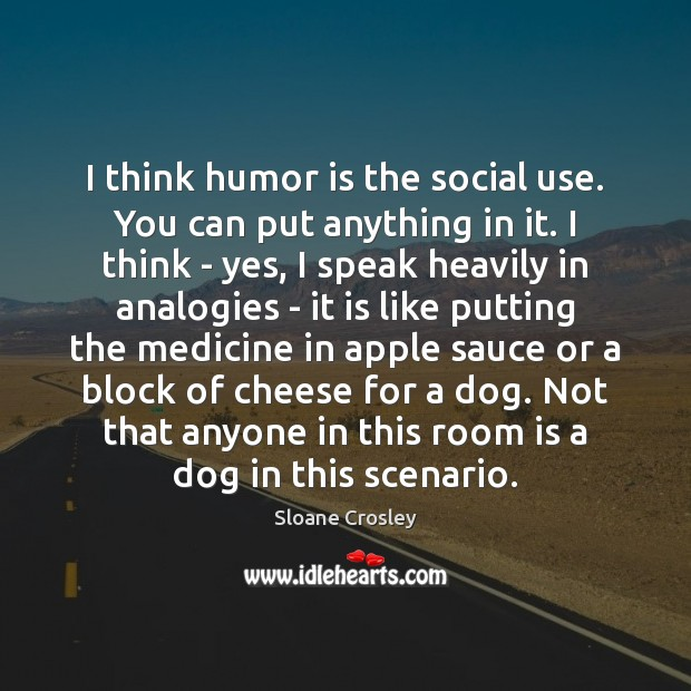 I think humor is the social use. You can put anything in Sloane Crosley Picture Quote