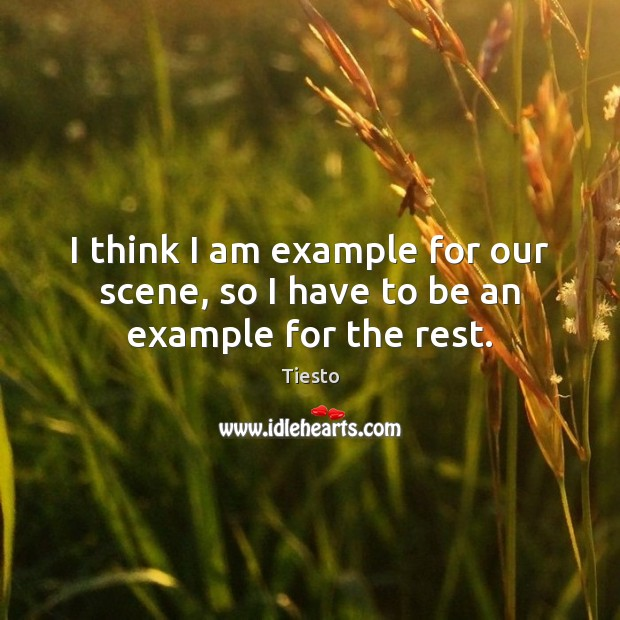 I think I am example for our scene, so I have to be an example for the rest. Tiesto Picture Quote