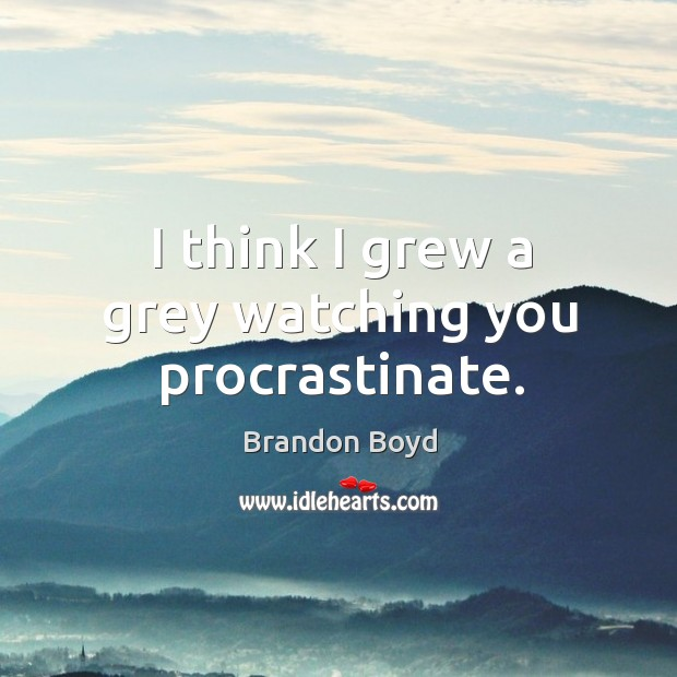 I think I grew a grey watching you procrastinate. Brandon Boyd Picture Quote
