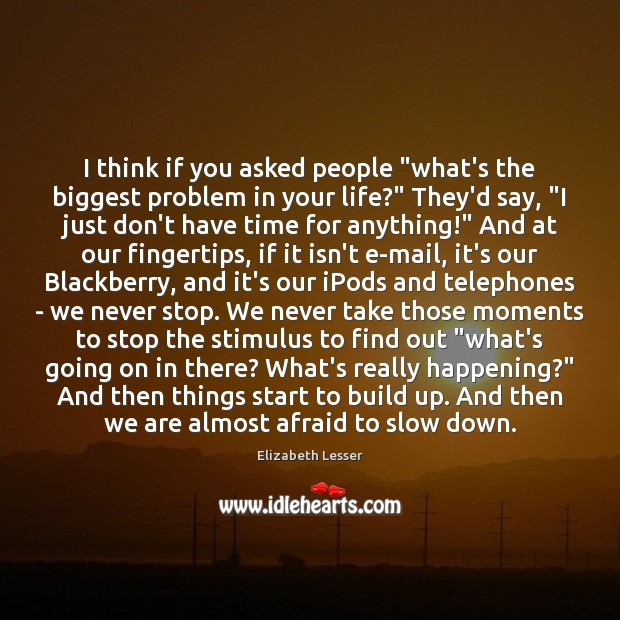 """I think if you asked people """"what's the biggest problem in your Elizabeth Lesser Picture Quote"""