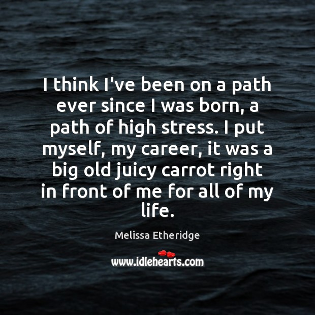 I think I've been on a path ever since I was born, Melissa Etheridge Picture Quote