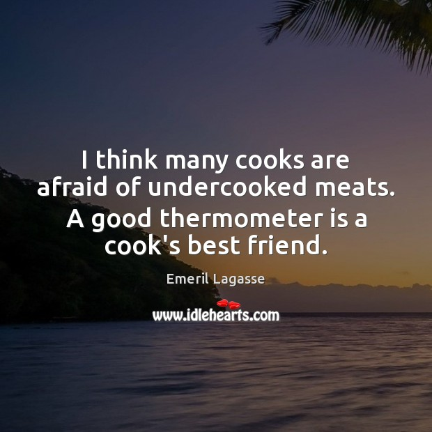 I think many cooks are afraid of undercooked meats. A good thermometer Emeril Lagasse Picture Quote