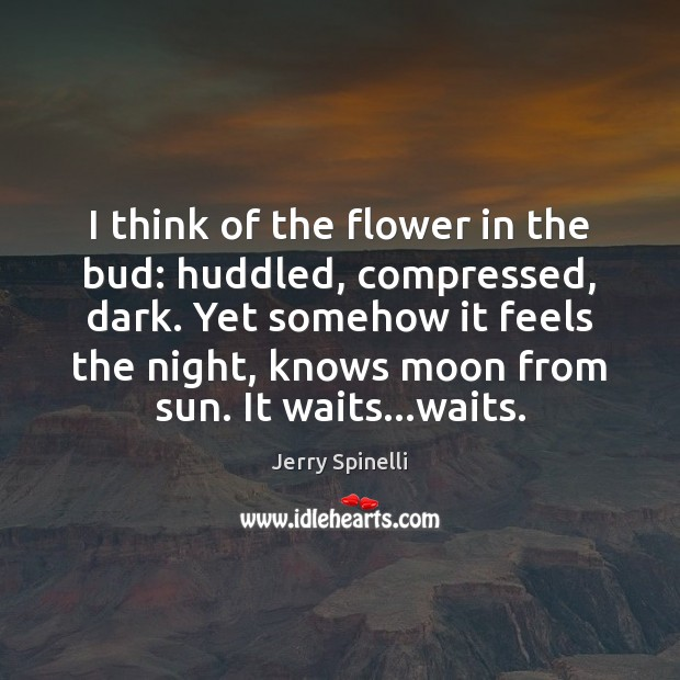 I think of the flower in the bud: huddled, compressed, dark. Yet Flowers Quotes Image