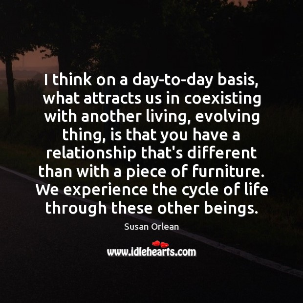 I think on a day-to-day basis, what attracts us in coexisting with Susan Orlean Picture Quote