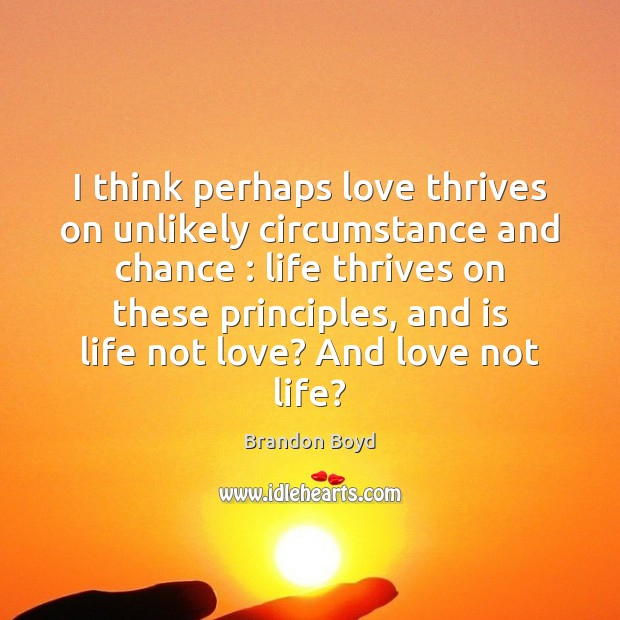 I think perhaps love thrives on unlikely circumstance and chance : life thrives Image