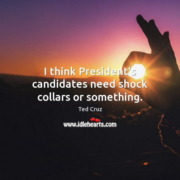 I think President's candidates need shock collars or something. Ted Cruz Picture Quote