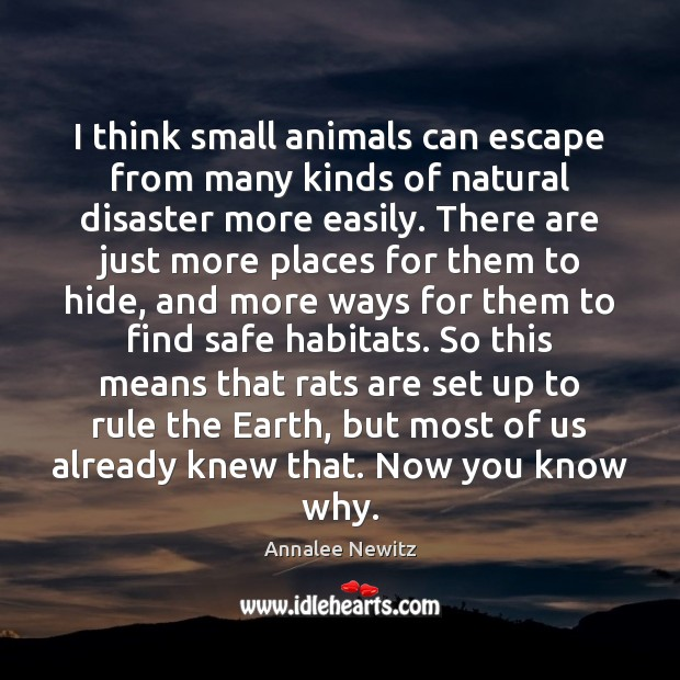 Image, I think small animals can escape from many kinds of natural disaster
