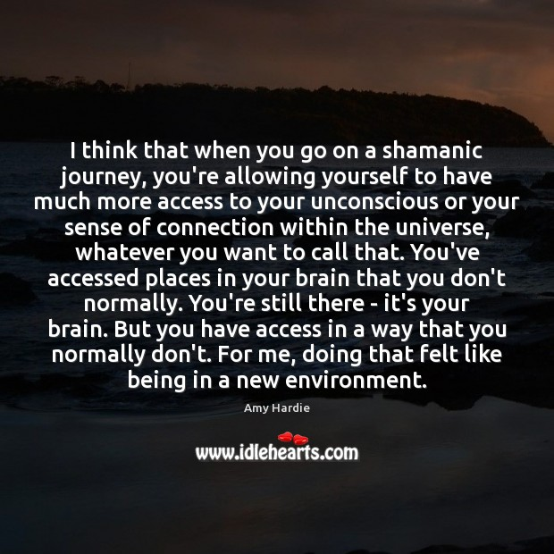 I think that when you go on a shamanic journey, you're allowing Amy Hardie Picture Quote