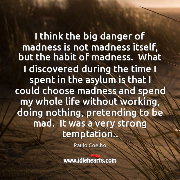Image, I think the big danger of madness is not madness itself, but