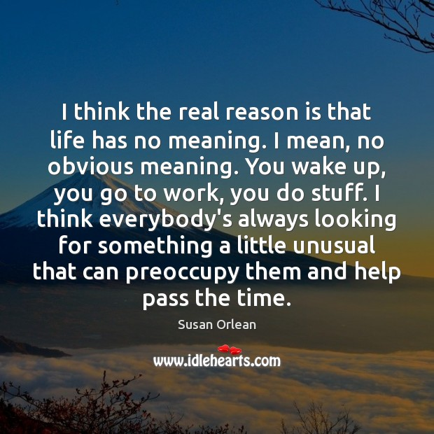 I think the real reason is that life has no meaning. I Susan Orlean Picture Quote