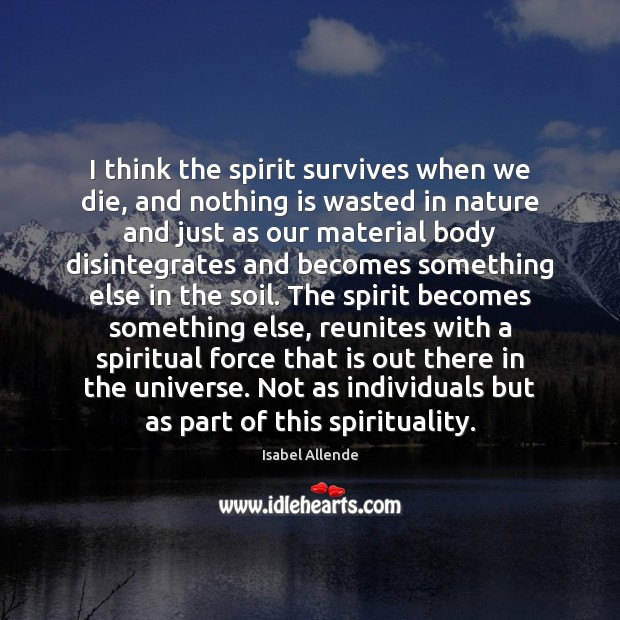 I think the spirit survives when we die, and nothing is wasted Image