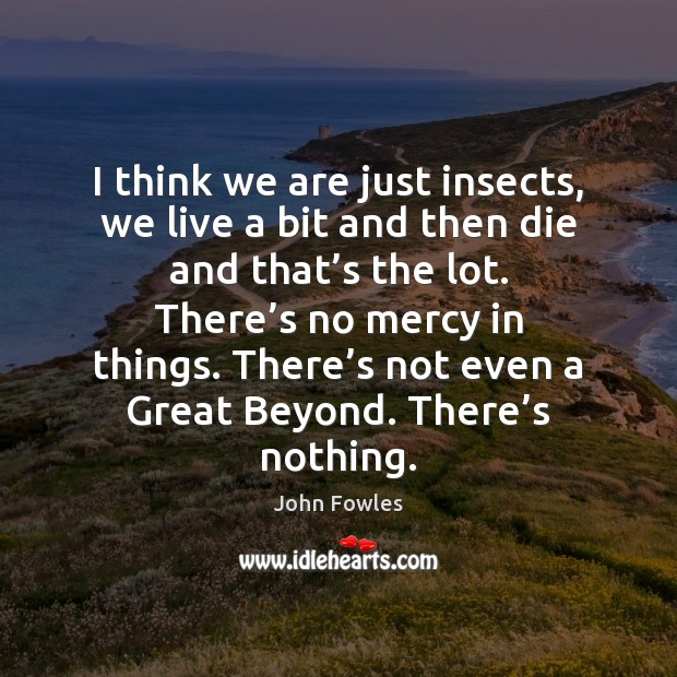 I think we are just insects, we live a bit and then John Fowles Picture Quote