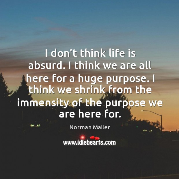 I think we shrink from the immensity of the purpose we are here for. Image