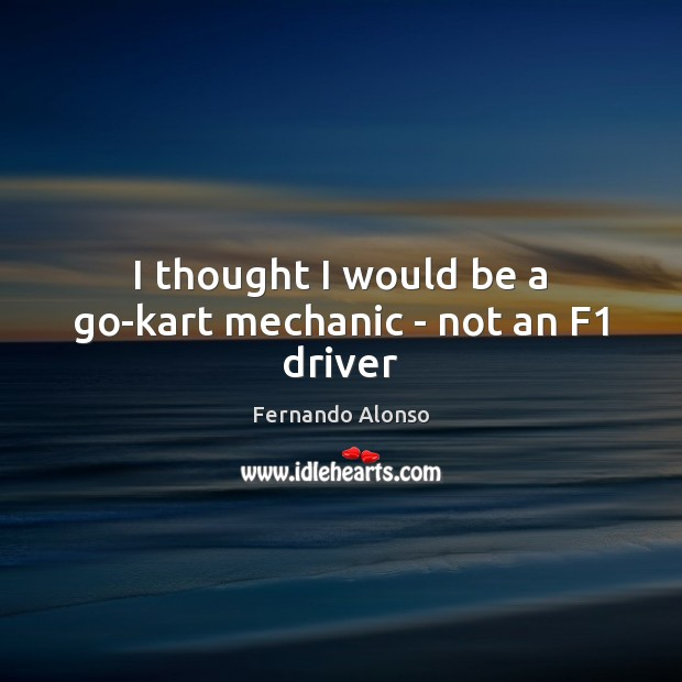 Image, I thought I would be a go-kart mechanic – not an F1 driver