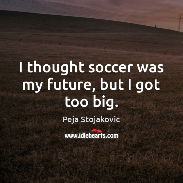 Picture Quote by Peja Stojakovic